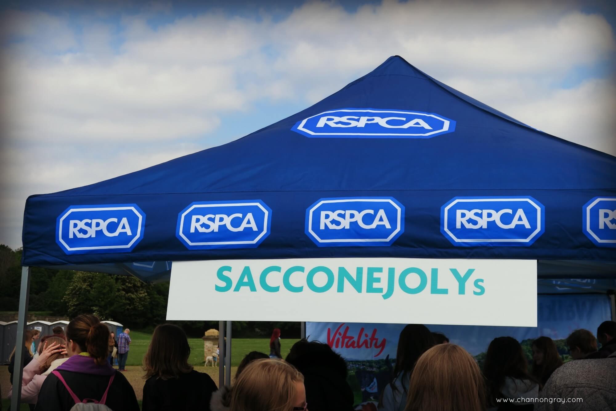RSPCA Big Walkies and the SacconeJolys - London